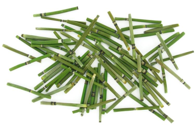 Tiges De Bambou 60 Pieces Bois 10 Doigts