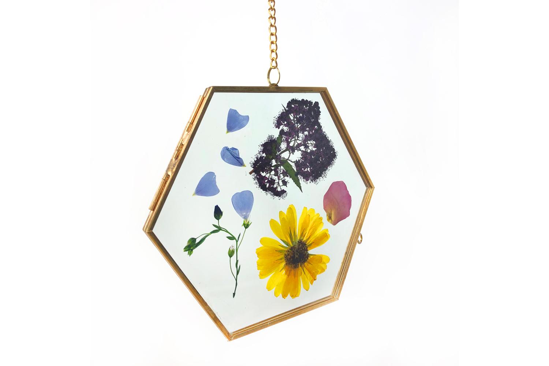 L Herbier Du Midi Produits Naturels cadre en verre hexagonal herbier - supports en verre - 10 doigts