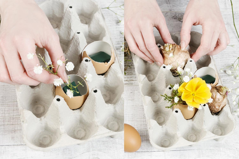Planter les fleurs