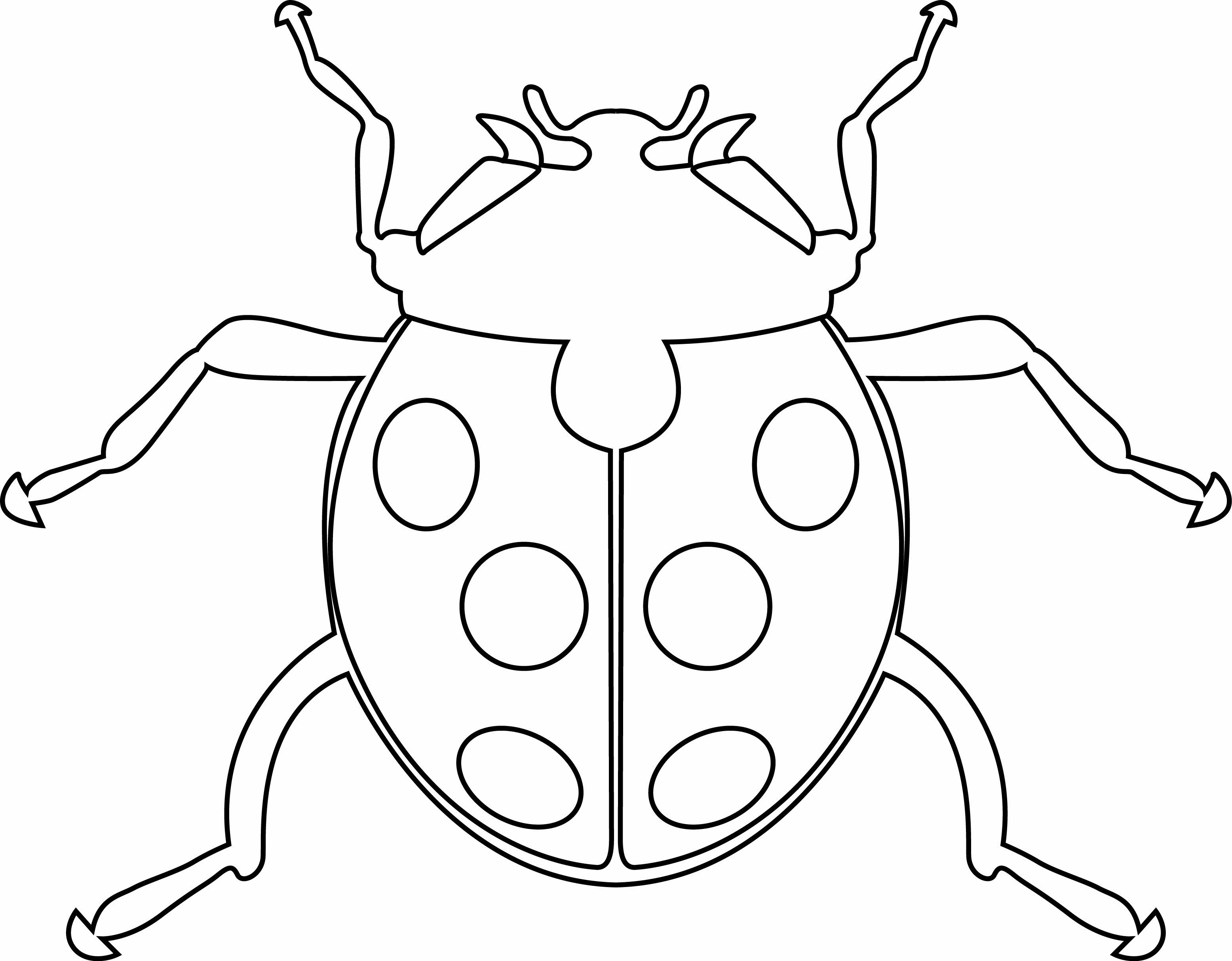 Coloriage - Animaux : Coccinelle 06 - 10 Doigts
