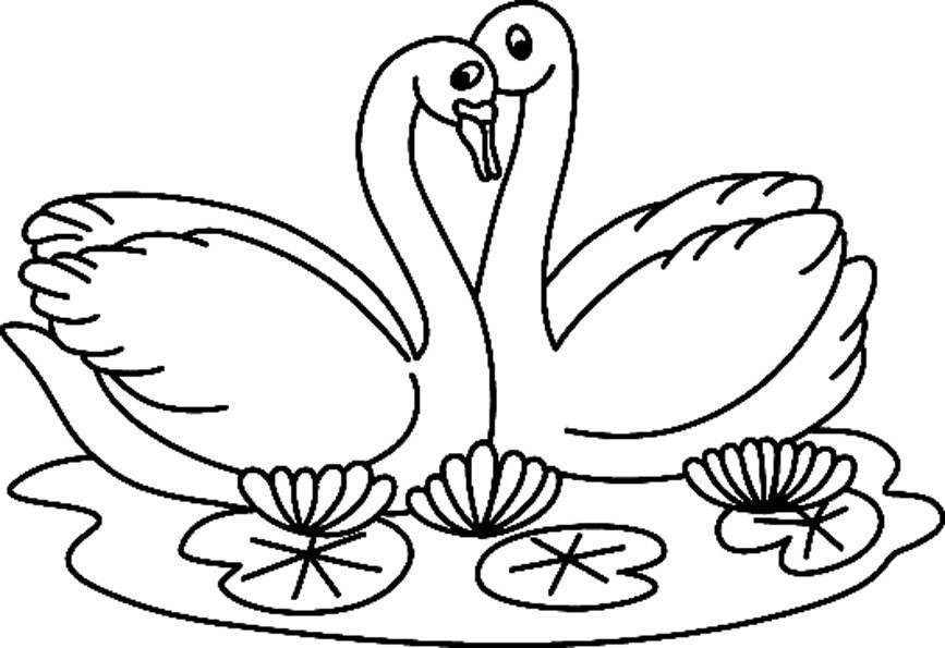 Coloriage Animaux Cygne 02 10 Doigts