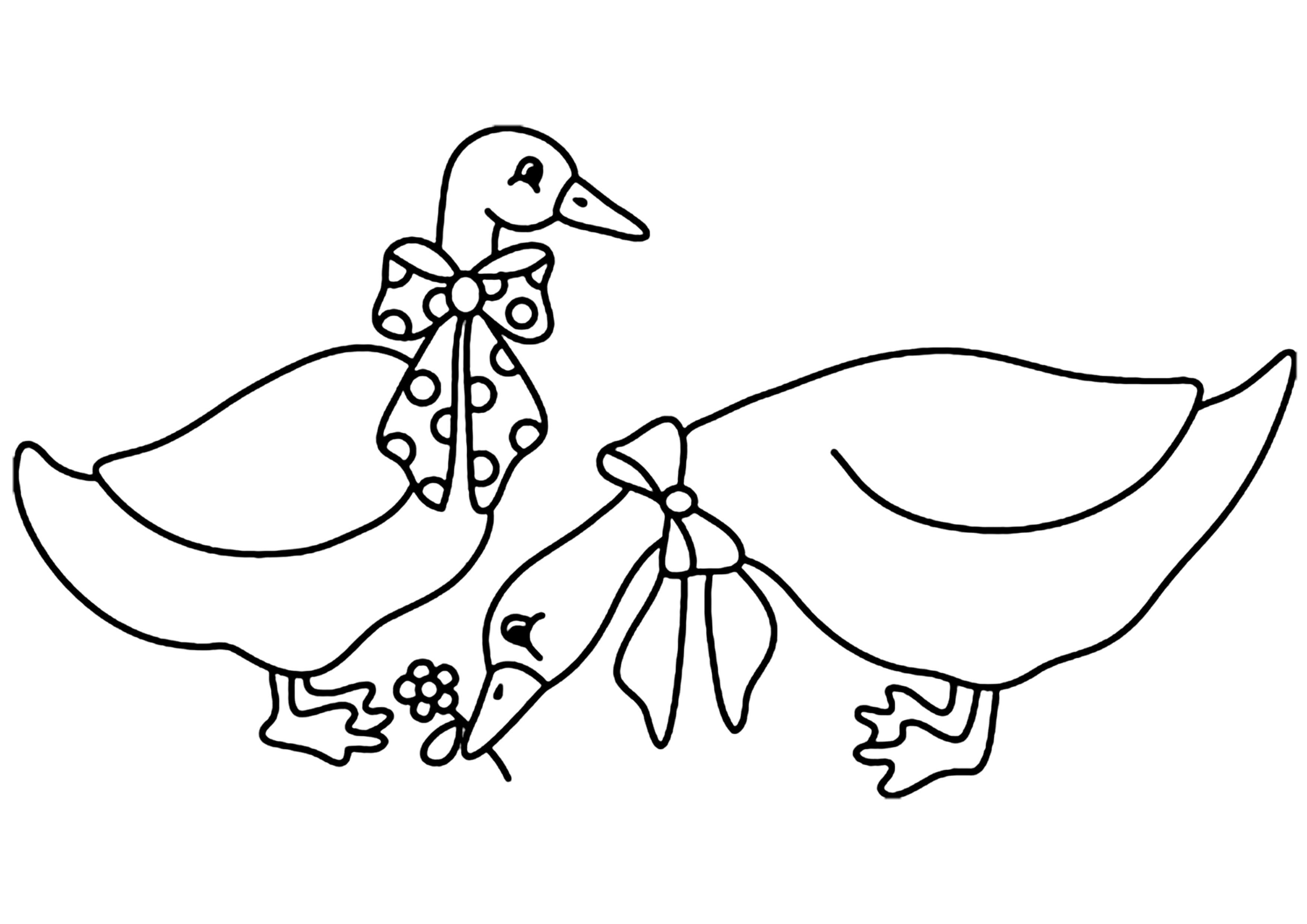 Coloriage - Animaux : Oie 02 - 10 Doigts