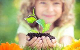 Je plante des graines - Activités Nature - 10doigts.fr