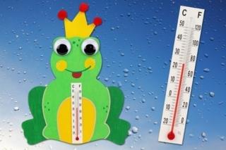 Thermomètre grenouille - Activités enfantines - 10doigts.fr