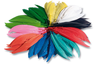 Plumes indiennes, couleurs vives assorties