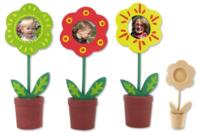 Kit de 6 pots de fleur cadre marguerite