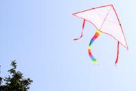 Cerf-Volant à décorer - Support blanc - 10doigts.fr