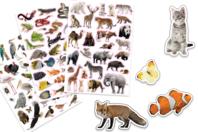 Gommettes animaux réalistes - 96 pièces - Gommettes animaux - 10doigts.fr