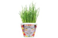 Kits du petit Jardinier : Ciboulette - 4 pots - Graines à planter - 10doigts.fr