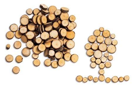 Rondelles de bois naturelles - Bois – 10doigts.fr