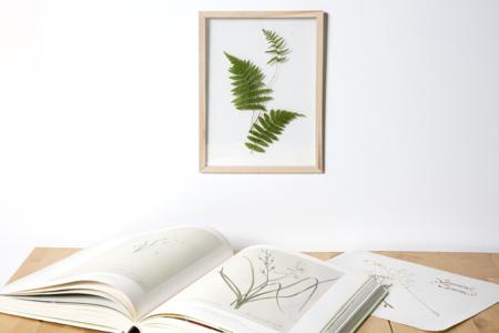 Cadre herbier format A4 - Cadres photos – 10doigts.fr