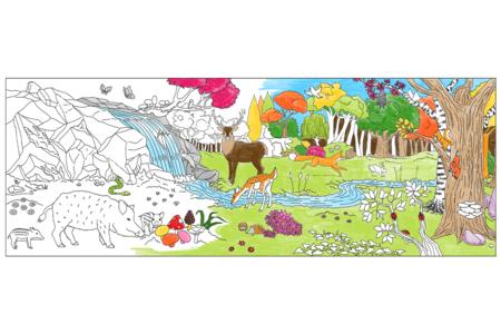 Fresque géante à colorier - La forêt - Support pré-dessiné – 10doigts.fr