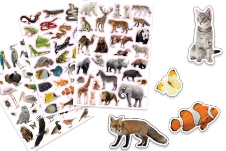 Gommettes animaux réalistes - 96 stickers - Gommettes Animaux – 10doigts.fr