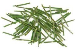 Tiges de bambou - 60 pièces - Bois – 10doigts.fr