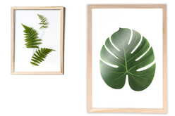 Cadre herbier format A4