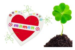 Cartes coeur à planter dans la terre - Lot de 6 - Compliments, cartes... – 10doigts.fr