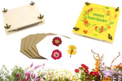 presse herbier fleuriste