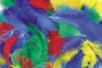 Plumes, couleurs vives assorties - 270 pièces - Plumes – 10doigts.fr