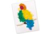 Plumes camaïeu de couleurs au choix - Plumes – 10doigts.fr