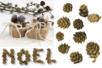 Pommes de pins - Éléments naturels – 10doigts.fr