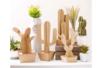 Cactus en carton à assembler - Set de 4 - Déco de la maison – 10doigts.fr