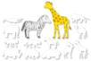 Grandes formes d'animaux d'Afrique à colorier - Set de 12 - Support blanc – 10doigts.fr