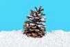 Poudre de neige décorative extra fine - Pailles et mousses – 10doigts.fr