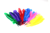 Grandes plumes indiennes assorties - Set de 36 plumes - Plumes – 10doigts.fr
