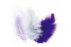 Plumes en camaïeu mauve - Environ 50 pces - Plumes 10448 - 10doigts.fr
