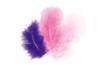 Plumes en camaïeu rose à parme - Set d'environ 50 plumes - Plumes 10444 - 10doigts.fr