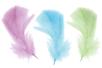 Plumes pastel - Set d'environ 50 plumes - Plumes 28119 - 10doigts.fr