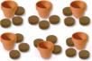 Kit horticulteur : 6 pots en terre cuite + 12 pastilles de terreau compressé - Céramique et Porcelaine 11581 - 10doigts.fr